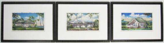 Hawaii cottages framed together